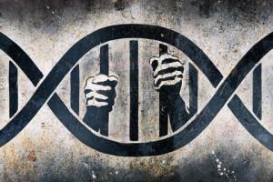 DNA Activation or DNA Mutation