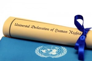 united-nations-human-rights
