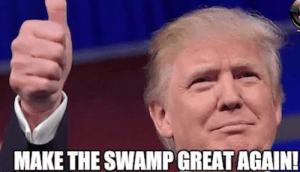 trump cabinet picks make the swamp great again