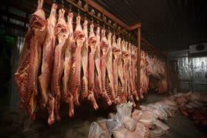 vaccine animal cells cow serum abattoir