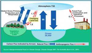 IPCC manmade CO2 output levels