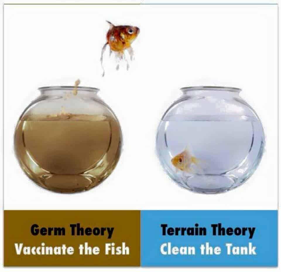 inner terrain vs oute terrain-germ-theory-vaccines
