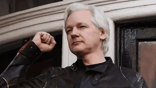 assange hearing day 7