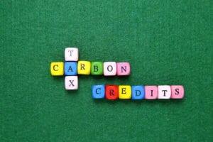personal carbon allowances